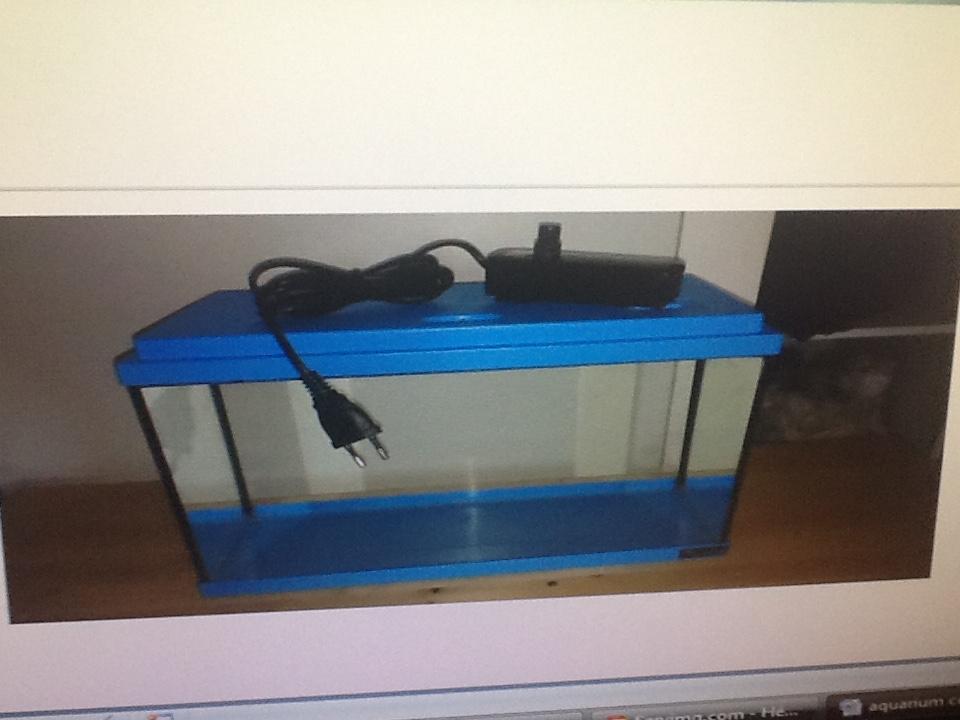 aquarium avec couvercle fermé ?  150517070645657759