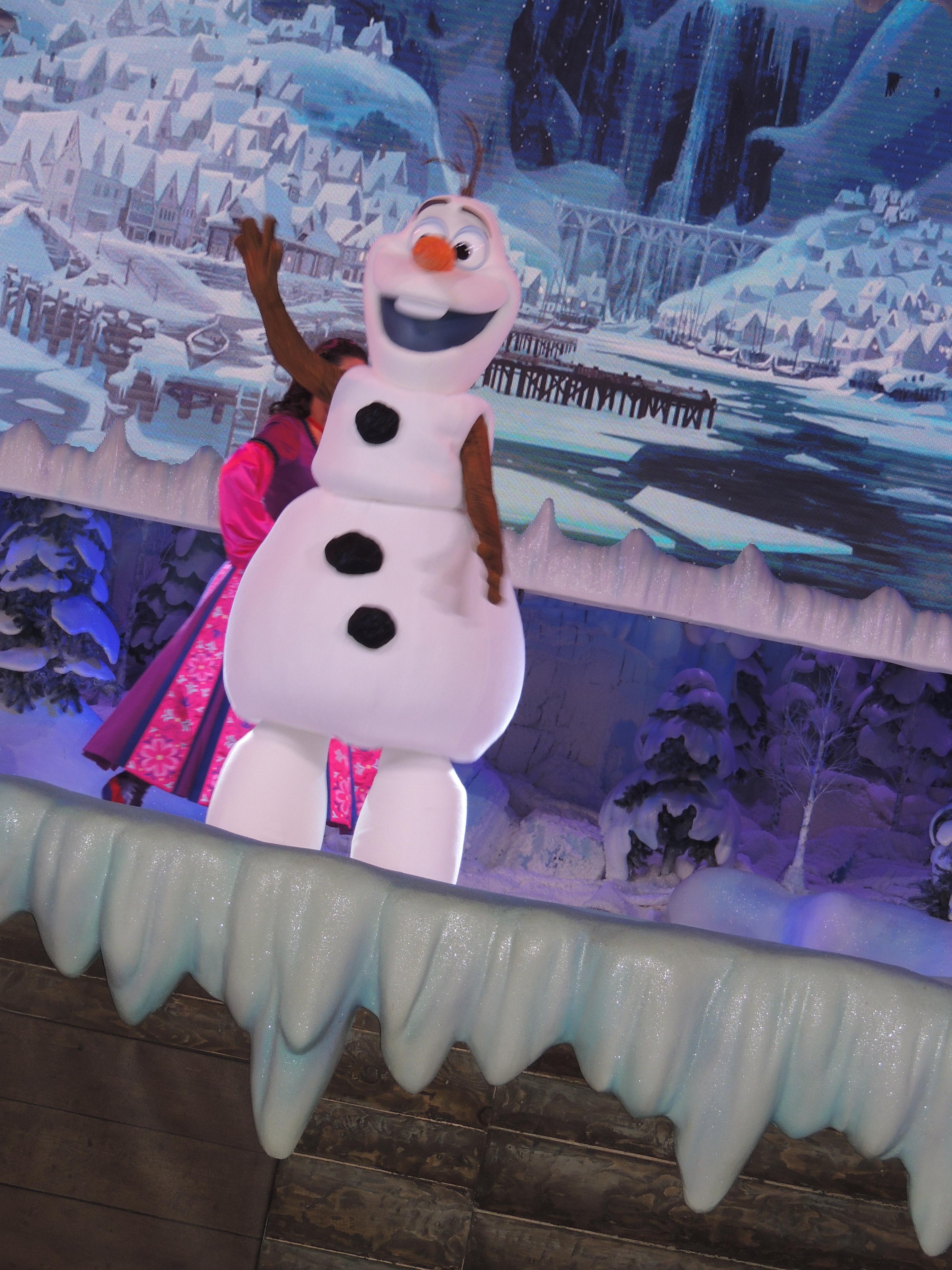 chantons la reine des neiges  150602032302517731