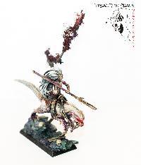 Bordel de Pazu (elfes noirs, AOS, elfes sylvains...) Mini_150723050756336278