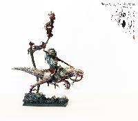 Bordel de Pazu (elfes noirs, AOS, elfes sylvains...) Mini_150723050756876157