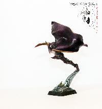 Bordel de Pazu (elfes noirs, AOS, elfes sylvains...) Mini_150723051246832838