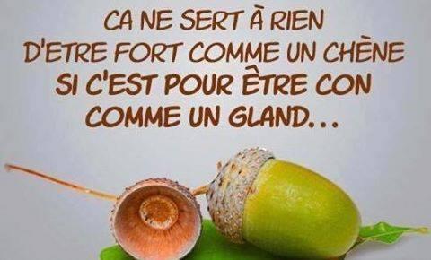 Les histoires drôles & humour - Page 24 150802105554679990
