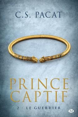 prince-captif,-tome-2---le-guerrier-572837-250-400