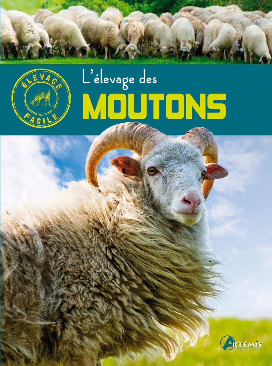 L élevage des moutons