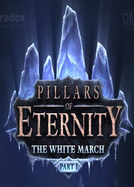 Poster for Pillars of Eternity: The White March - Part 1