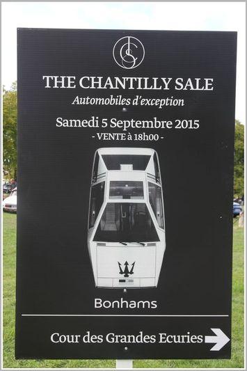 Boomerang in vendita all'asta a settembre 150908081431224070