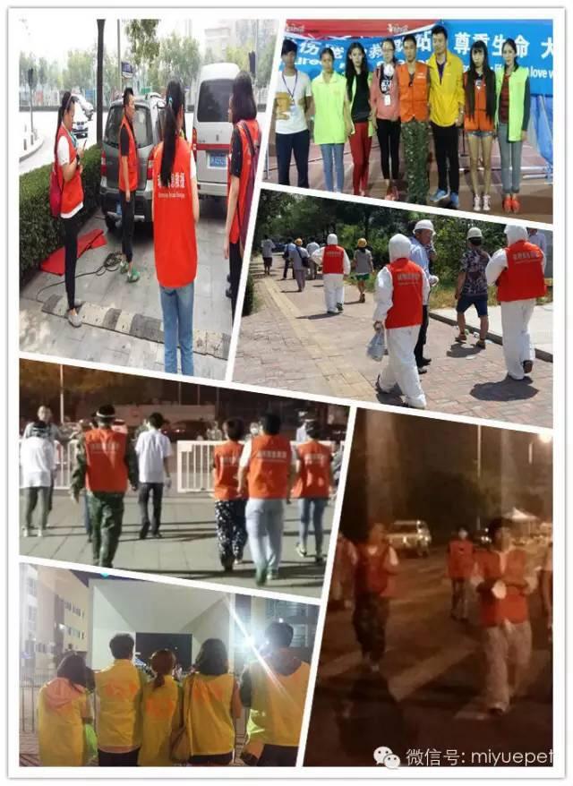les volontaires 2