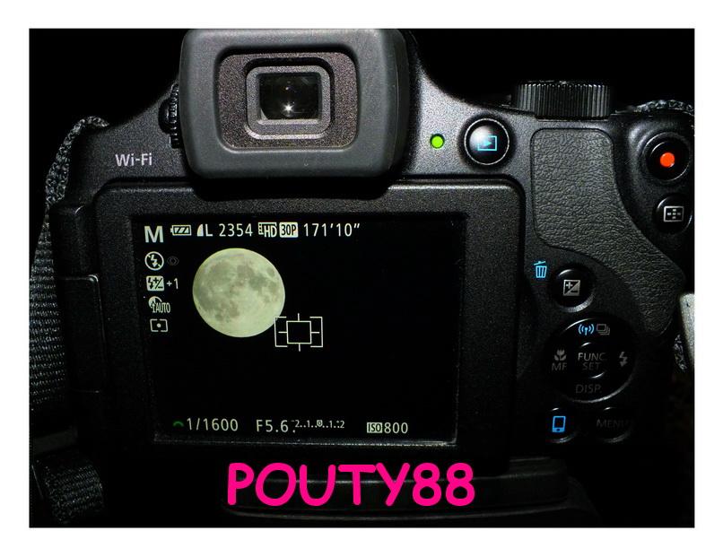 DSCF8495A