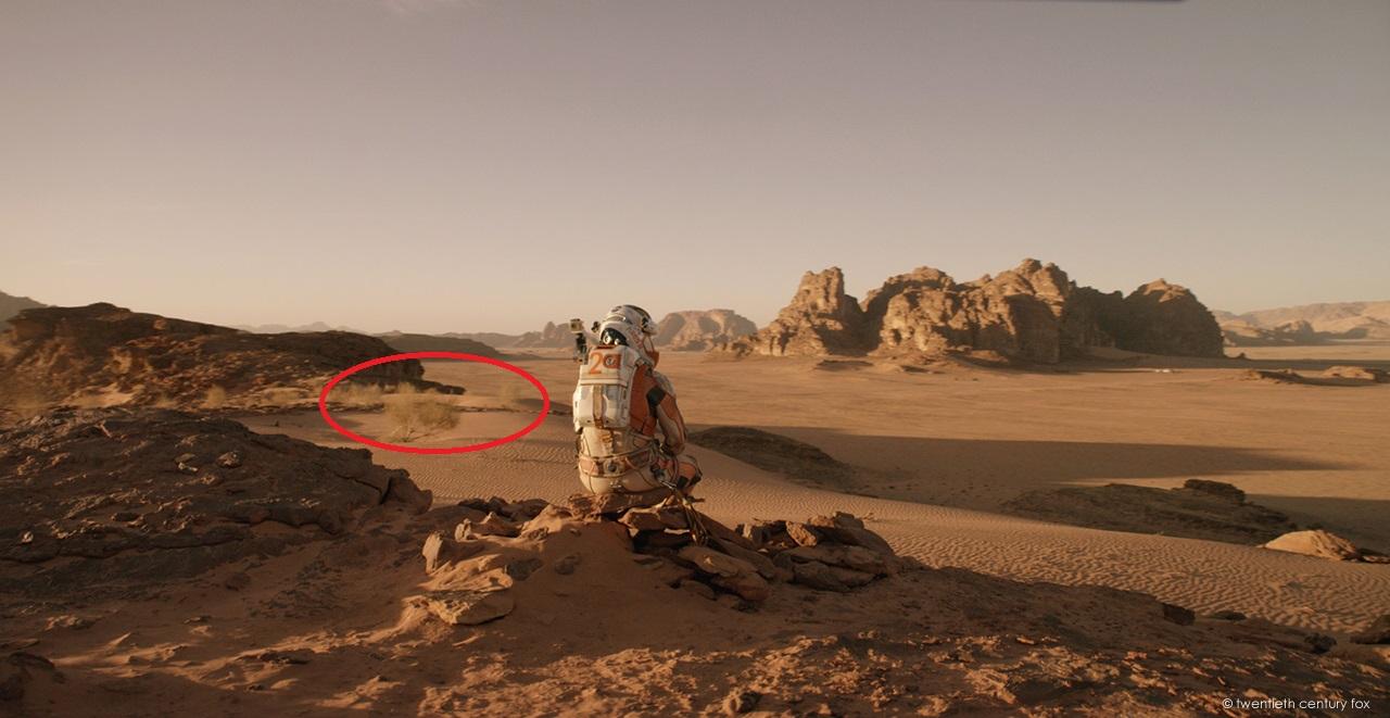 Des arbustes poussent sur Mars 151022085240702805
