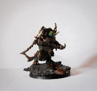 Bordel de Pazu (elfes noirs, AOS, elfes sylvains...) Mini_151023014406323454