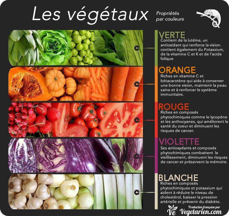 couleurs des vegetaux