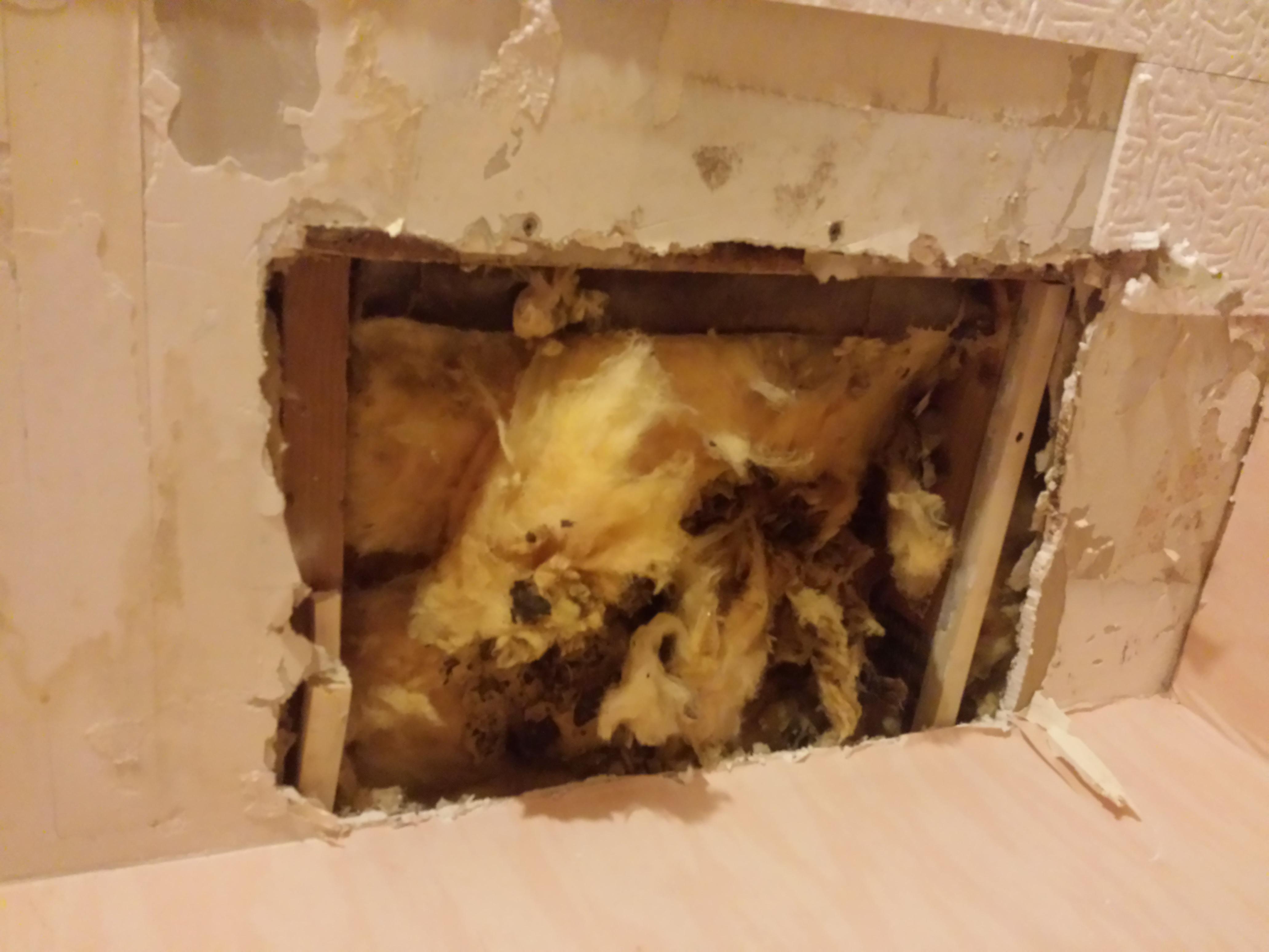 Réparer Un Plafond En Platre concernant plafond percé