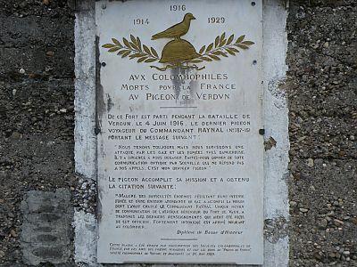 pigeon-Vaillant