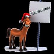 Rang pour Noël et hiver 151123015911408253