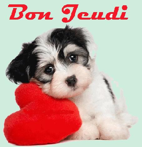 Bon Jeudi 151210063249613664