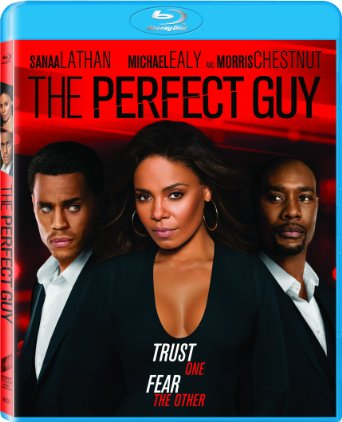 The Perfect Guy poster image