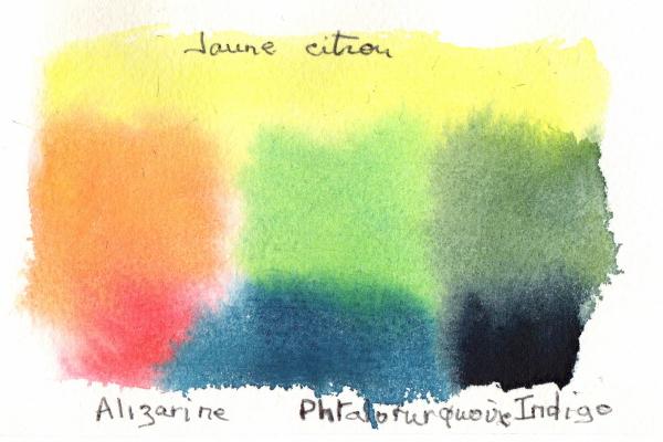 Cartes de voeux  (1 couleurs)_1