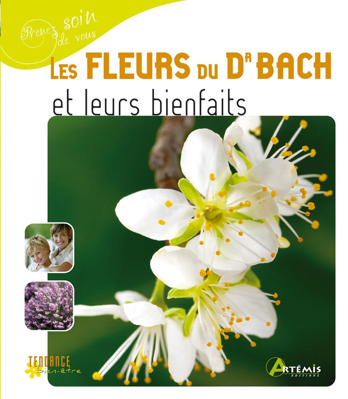 Les fleurs du Dr Bach et leurs bienfait