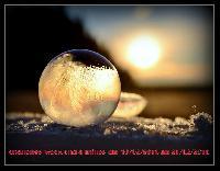 bulles-de-savon-gelees-par-angel-kelly-4