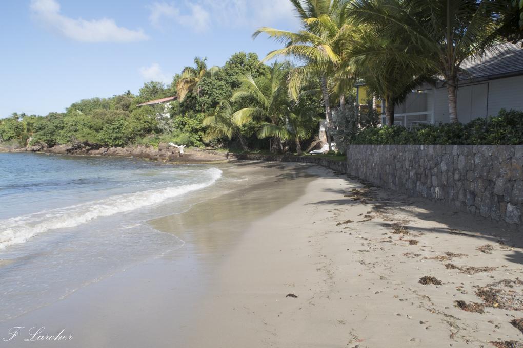 Ile de St Barth (Antilles) 1602190315442459