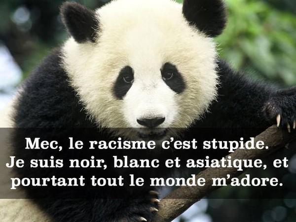 Le racisme 160221041307358979