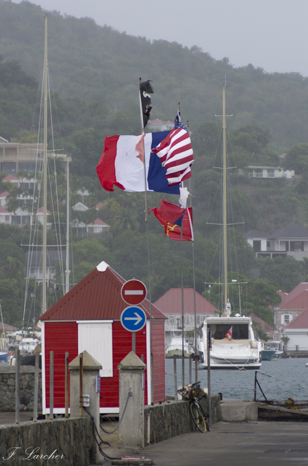 Ile de St Barth (Antilles) - Page 2 160222103153978717
