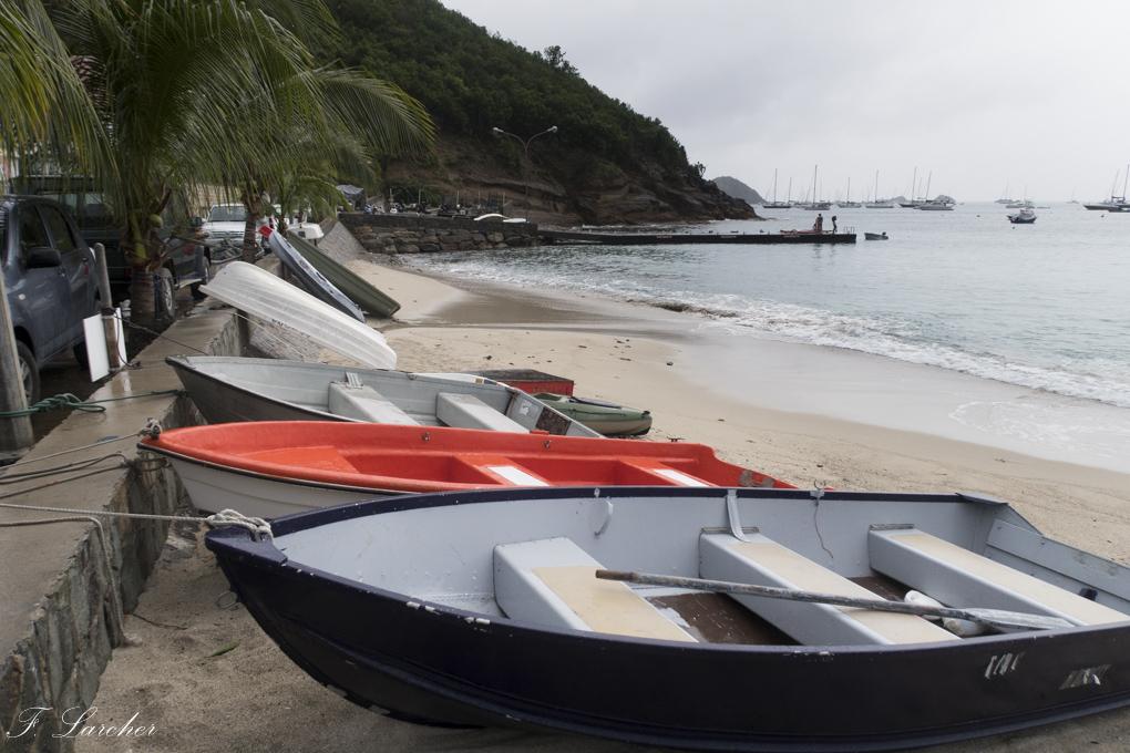 Ile de St Barth (Antilles) - Page 2 16022210315718923