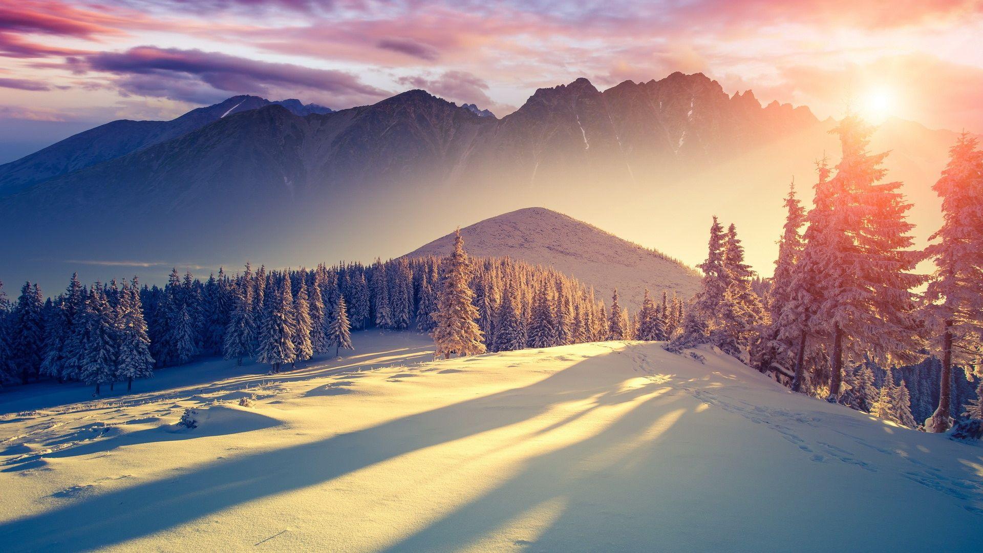 Ombre_aube_en_hiver