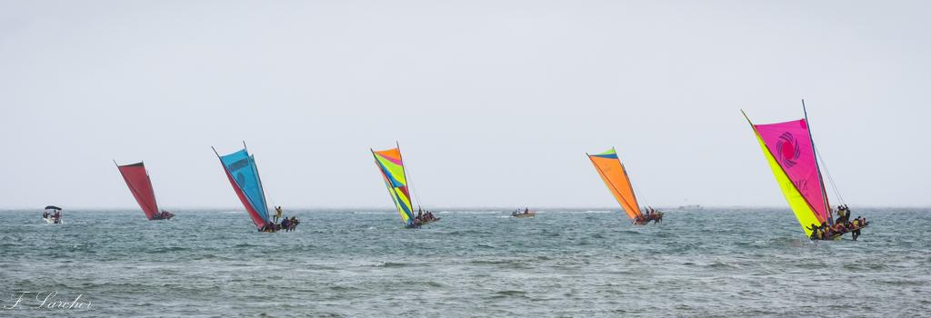 Courses de yoles en Martinique - Page 2 160312075546435029