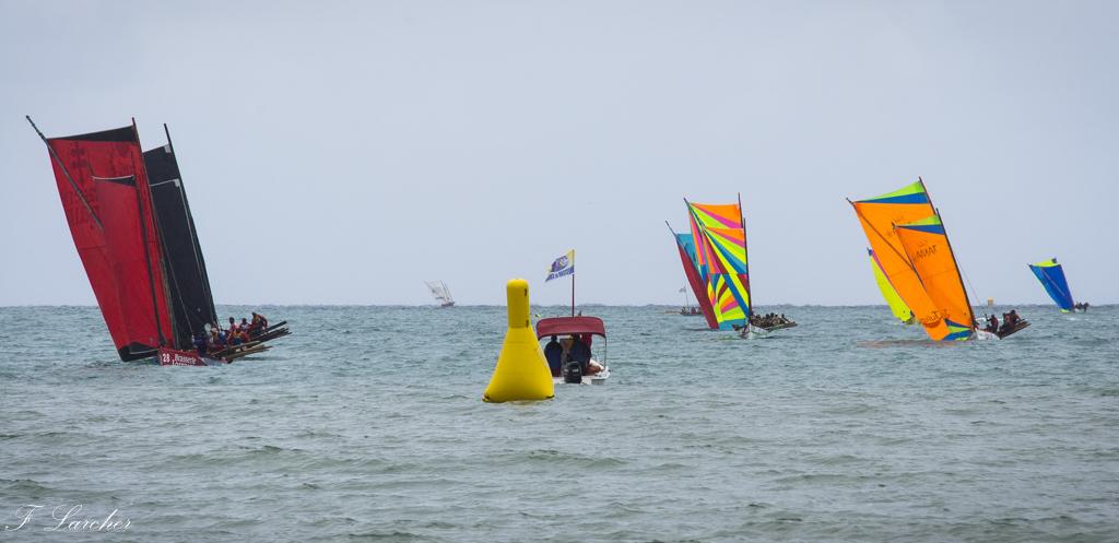Courses de yoles en Martinique - Page 2 160312075552616641