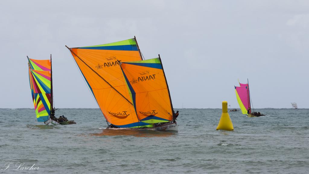 Courses de yoles en Martinique - Page 2 160312075557952598