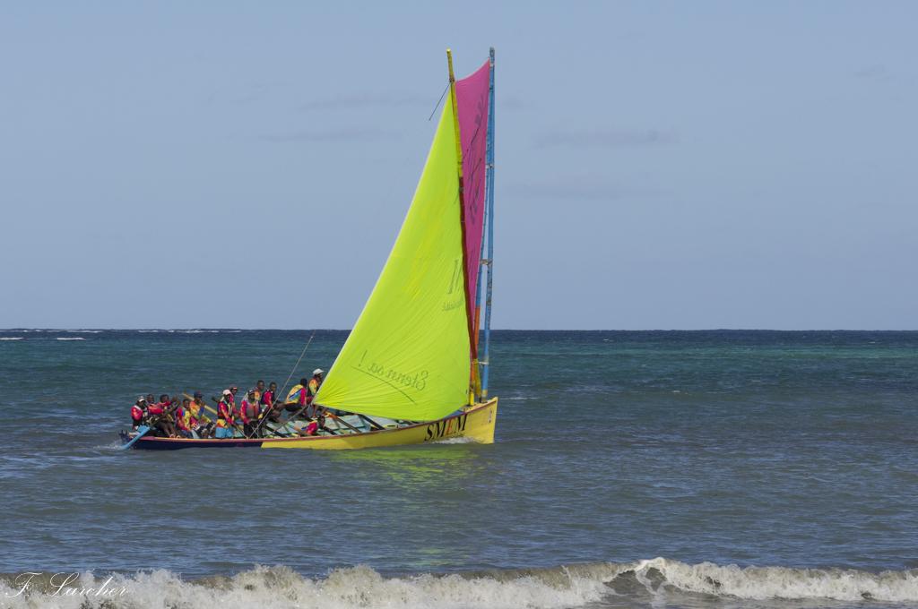 Courses de yoles en Martinique - Page 2 160312075608886397