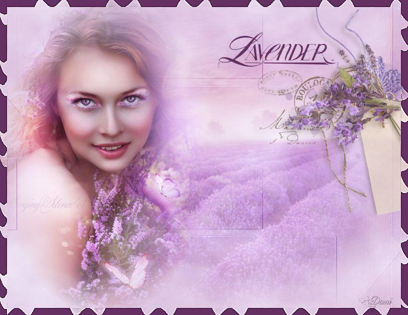 Je vois la vie en mauve violet parme page 162 supertoinette for Mauve la vie claire