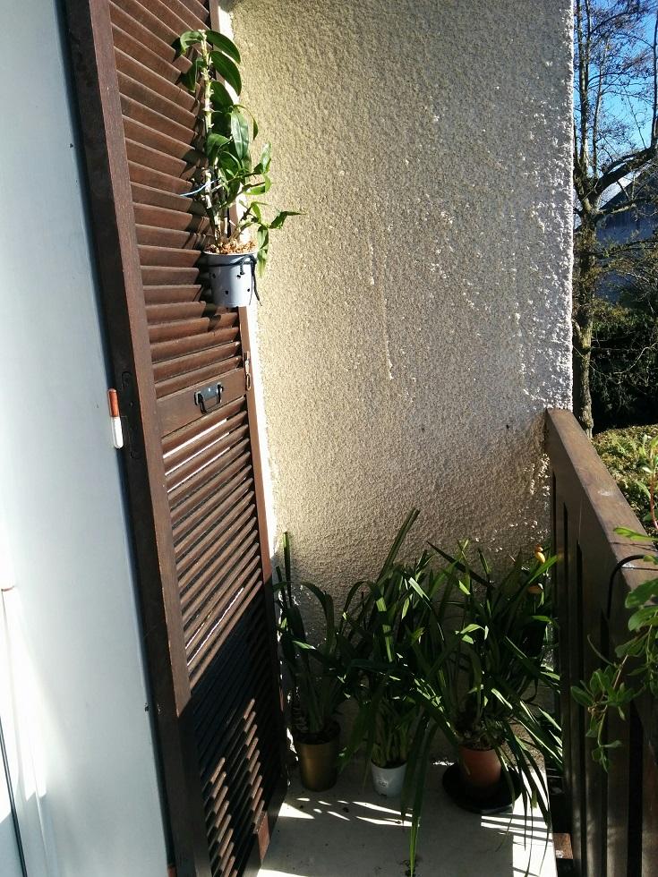 Annexion pioupiouesque de la maison (et du travail) 160410090707555724
