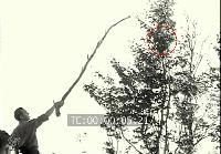 Lac Chauvet, l'enquête et l'analyse par IPACO - Page 9 Mini_160418061110390645