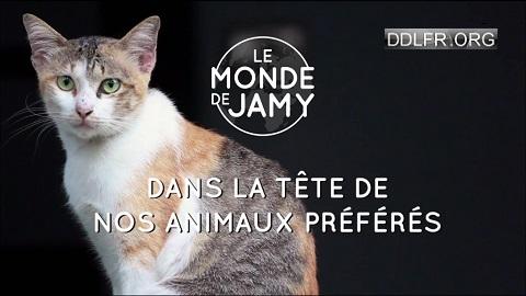 Le monde de Jamy Dans la tête de nos animaux préférés