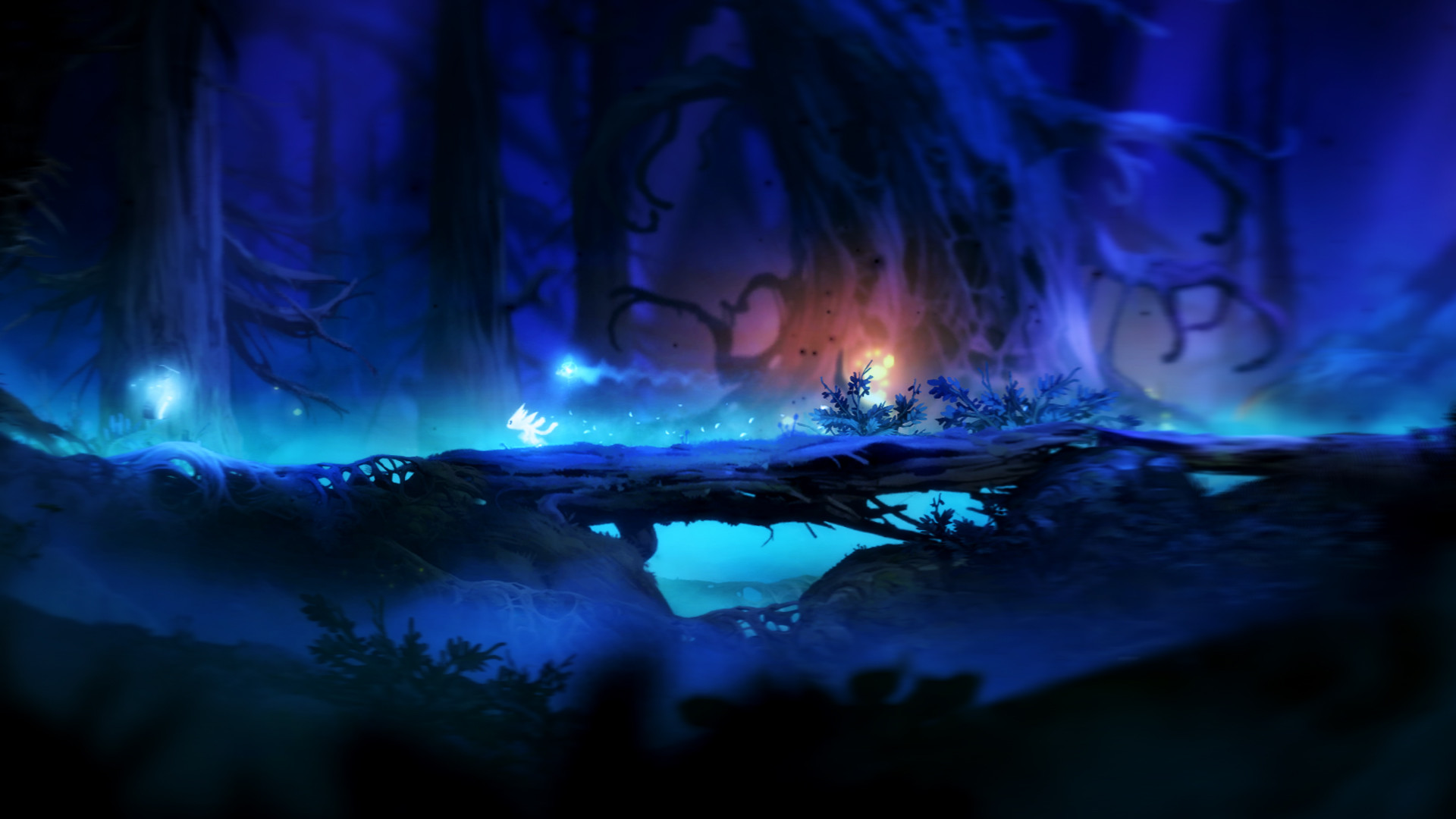 Ori and the Blind Forest: Definitive Edition image 3