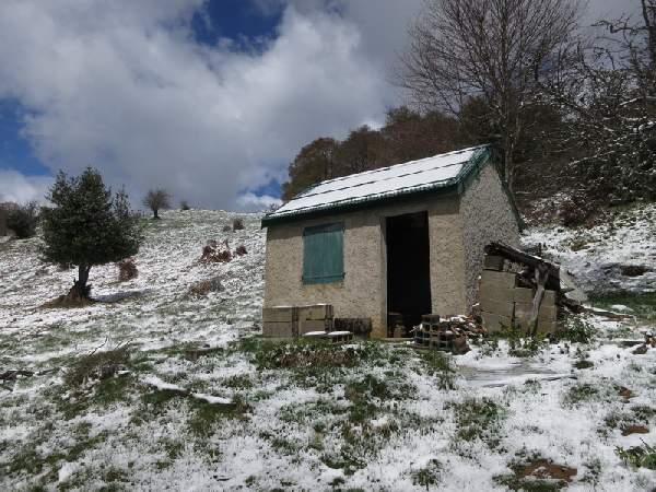 Cabane de guran