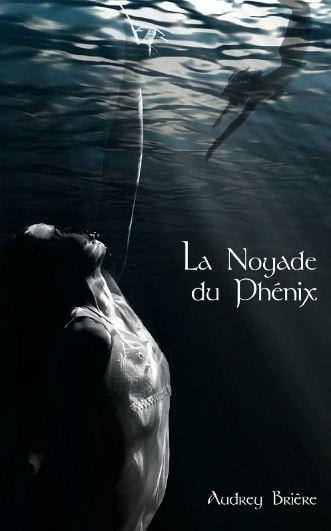 La Noyade du Phenix - Audrey Briere