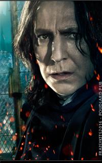 Harry Potter Réel  160513090442631597
