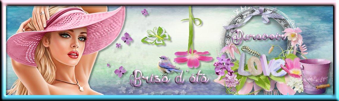 brise3