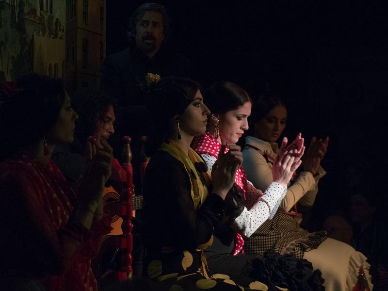Flamenco à Grenade 160529043640428995