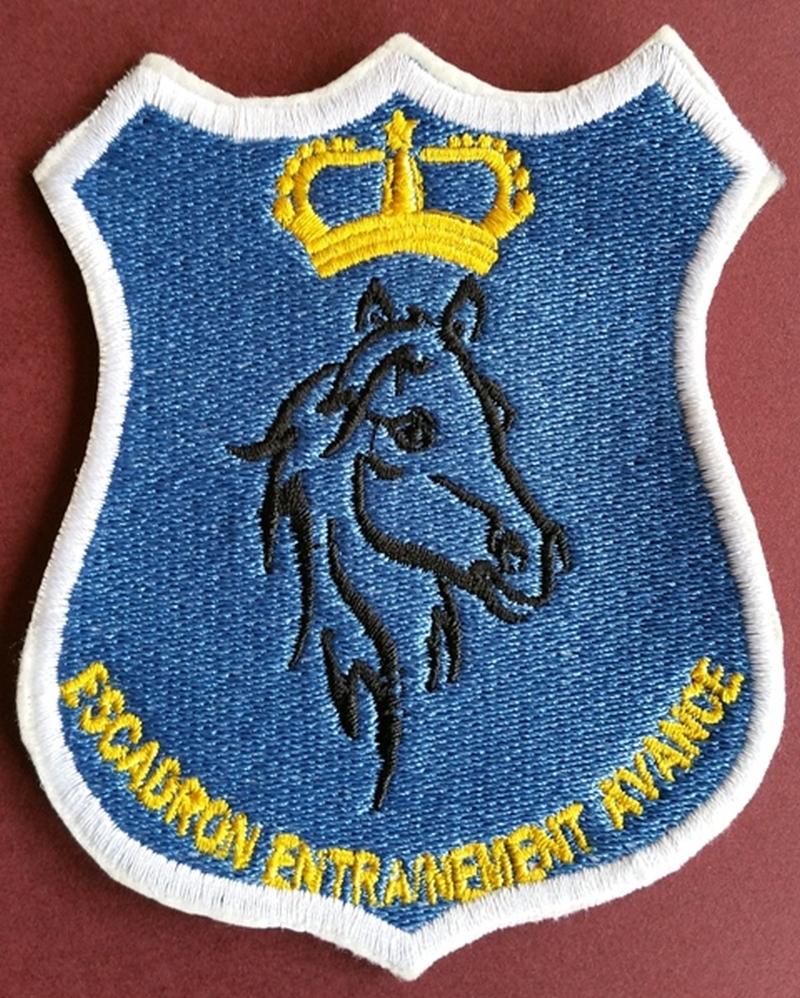 RMAF insignia Swirls Patches / Ecussons,cocardes et Insignes Des FRA - Page 5 160530042810366097