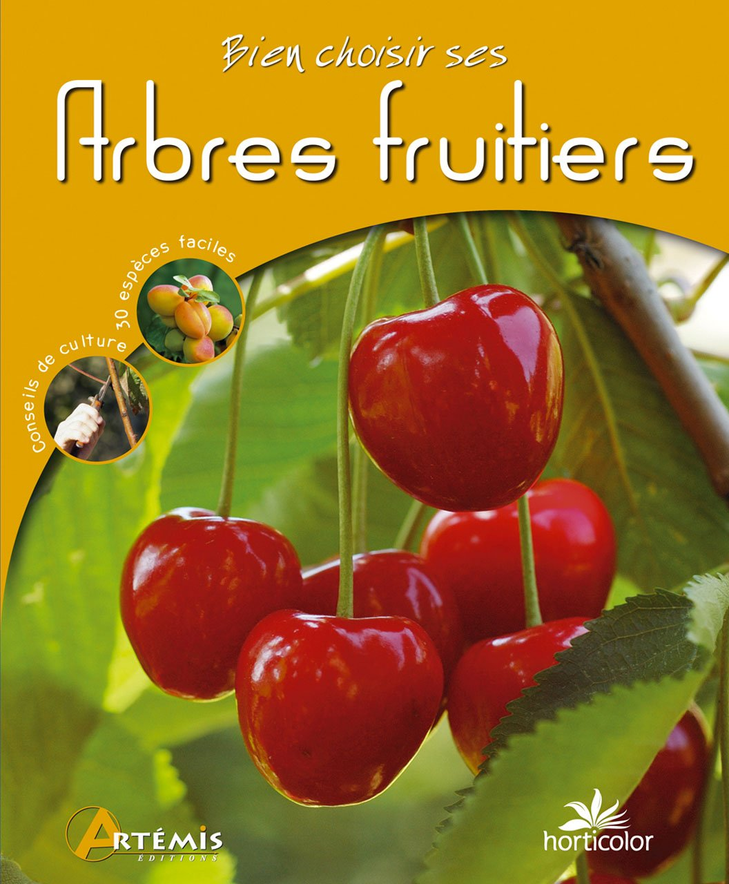Arbres fruitiers : bien choisir