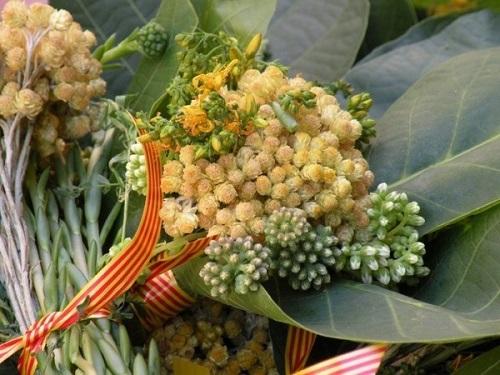 Bouquet Saint Jean