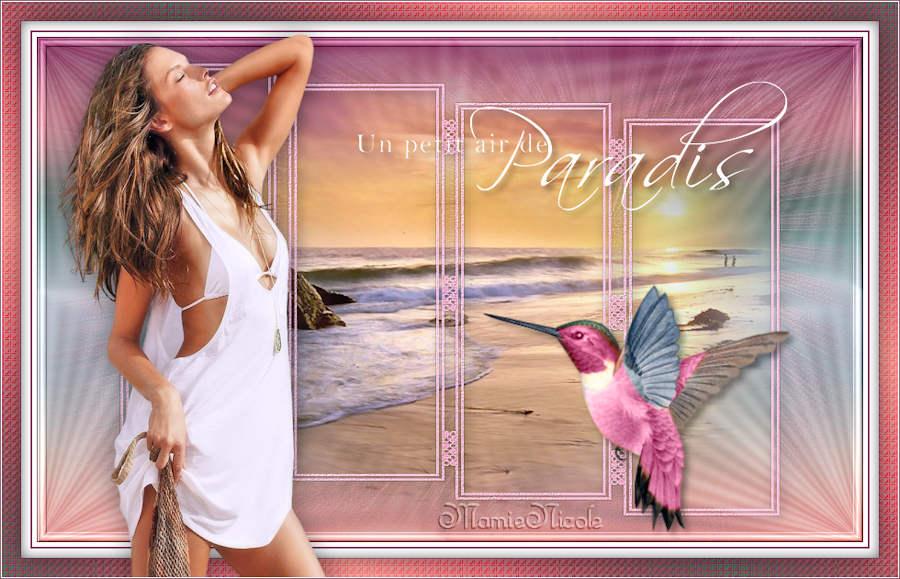 Un petit coin de paradis (PSP) 160626110930747493