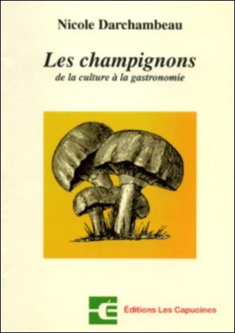 Les champignons : de la culture à la gastronomie