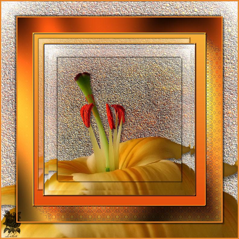 Cadre fleur