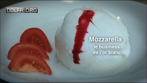 Mozzarella, le business de l'or blanc