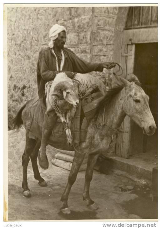 Superstition chaouie  dans Attributs d'Algérienneté 160910115305674244
